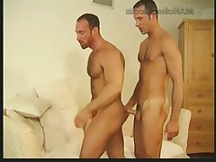 """Hung, Romanian Marckollis and hairy, American Gus Avery suck each other..."