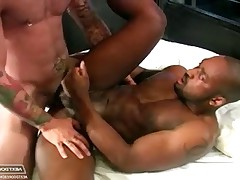 Black stud fucks with hung stallion after a hot shower