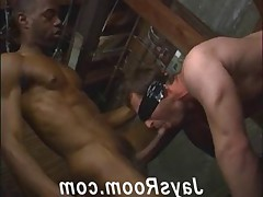 Anon Hot interracial breeding at its best from JaysRoom ...