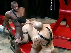 Cock-craving whore AJ & Shaved dominated Jordano Marc &