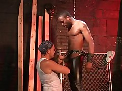 Additional studs Hong Jay Scorpio gets his big black dick sucked hungry..